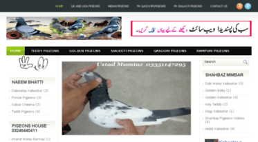 Get Kabootarbaaz1 blogspot com news - Kabootar Baaz | Pakistani